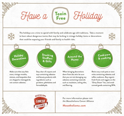Have  A Toxin Free Holiday