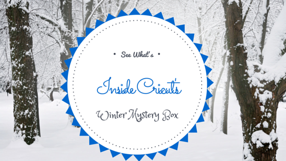 See What's Inside Cricut's Winter Mystery Box!