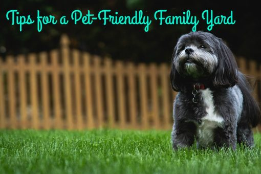 Tips for a Pet-Friendly Family Yard