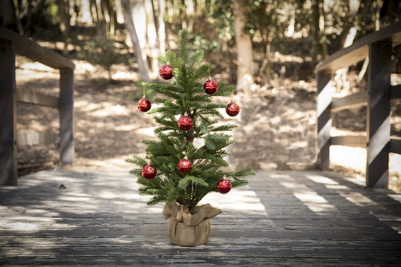 A Case for a Simple Christmas by North Carolina Lifestyle Blogger Champagne Style Bare Budget