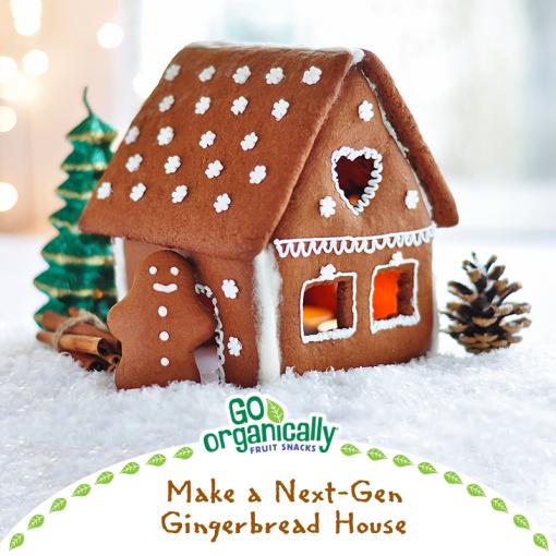 Make A Next-Gen Gingerbread House