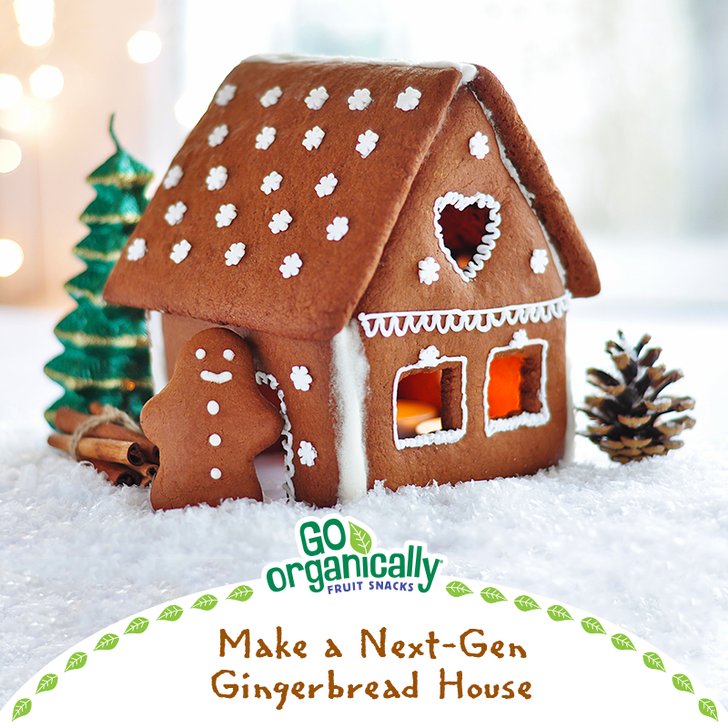 Make A Next-Gen Gingerbread House