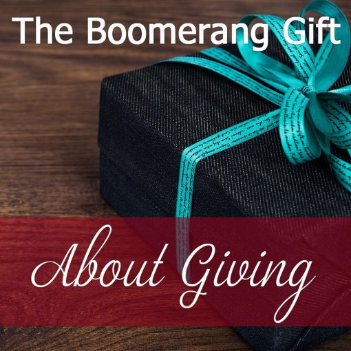 The Boomerang Gift From North Carolina Blogger Champagne Style Bare Budget