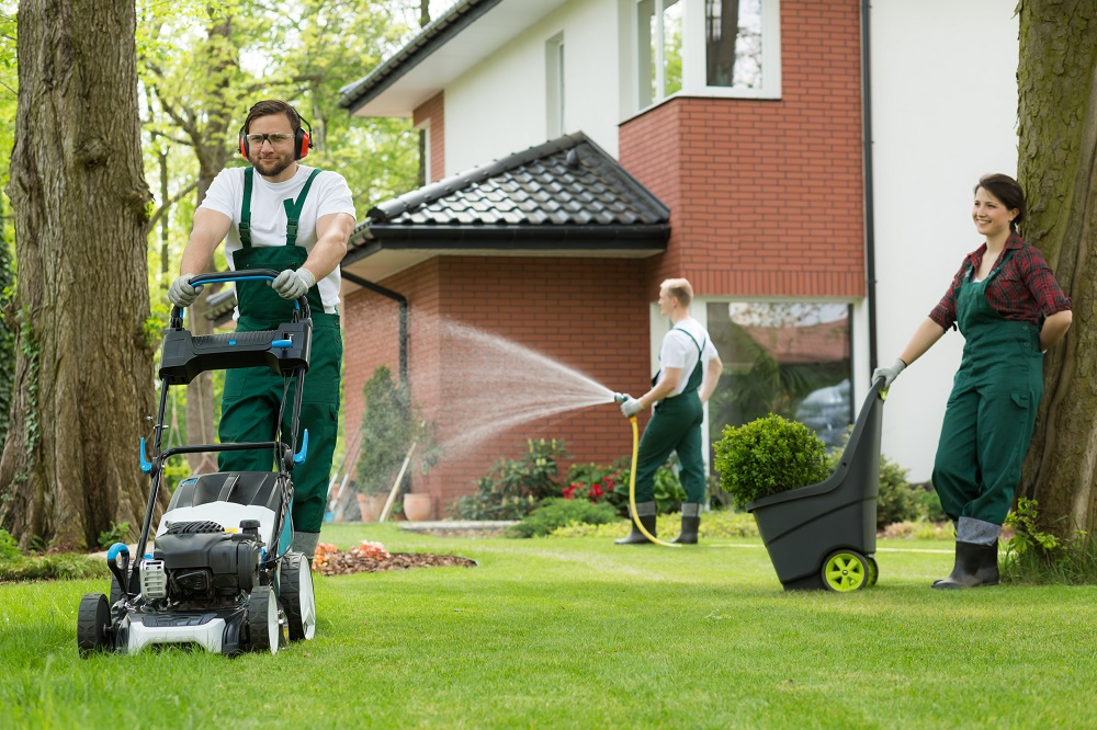 Hire lawn mowing service house home champagne style for Lawn mowing and gardening services