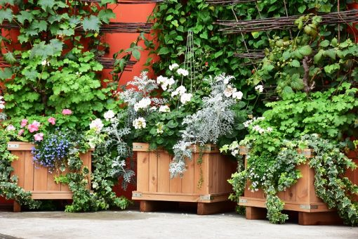 How to Choose the Right Kind of Planter Boxes for Apartment Gardens from North Carolina Lifestyle Blogger Champagne Style Bare Budget