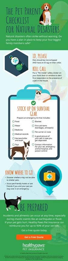 Pet Prep for Natural Disasters from North Carolina Lifestyle Blogger Champagne Style Bare Budget