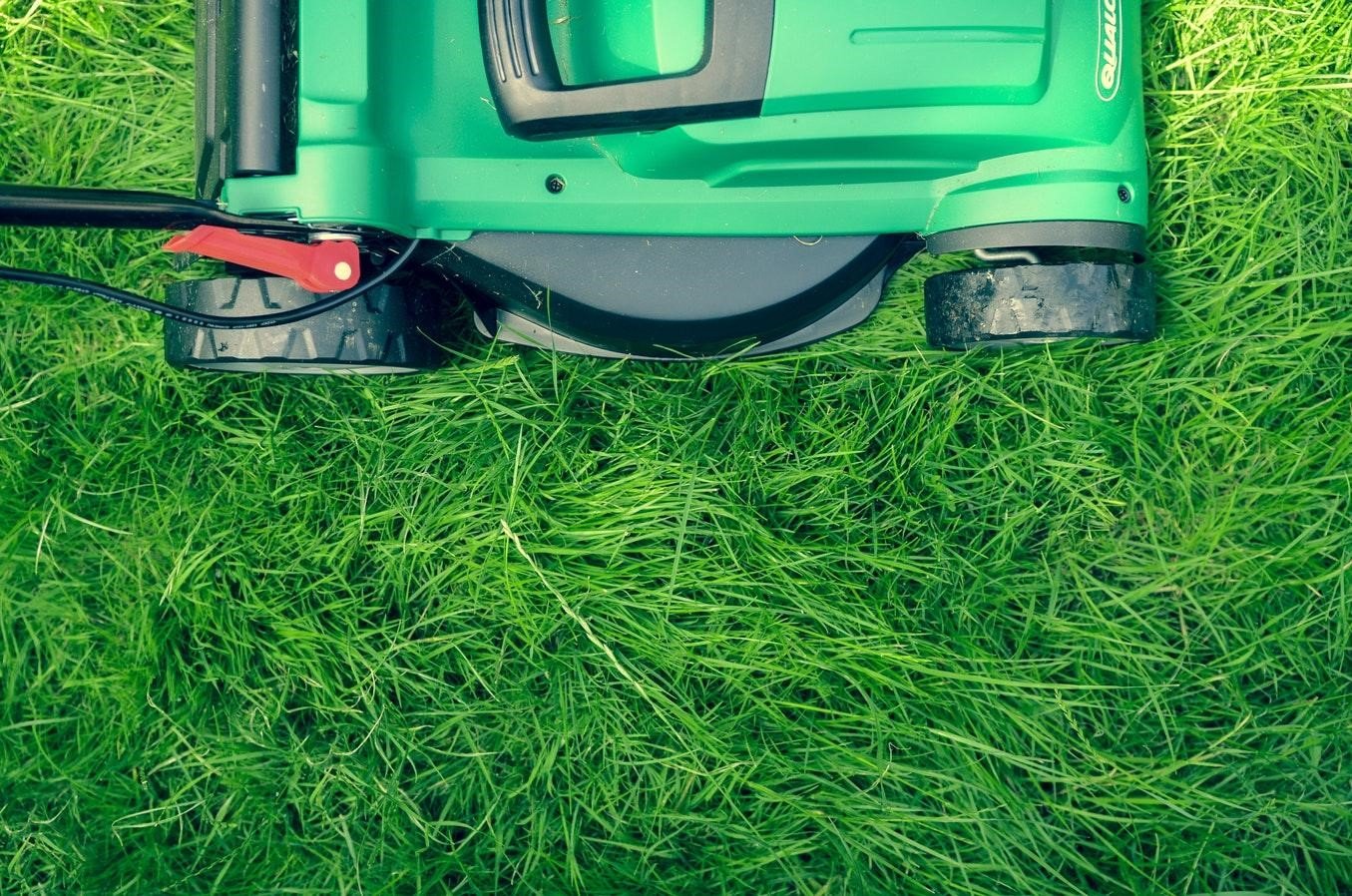 4 Ways of Taking Care of Your Lawn from North Carolina Lifestyle Blogger Champagne Style Bare Budget