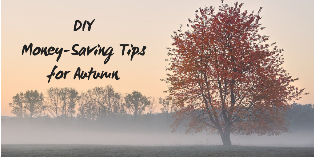 DIY Money-Saving Tips for Autumn by North Carolina Lifestyle Blogger Champagne Style Bare Budget