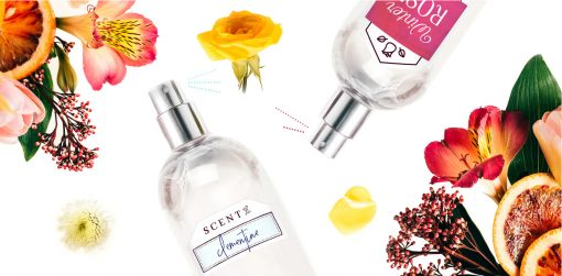 DIY Perfume from North Carolina Lifestyle Blogger Champagne Style Bare Budget