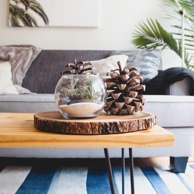 Furniture Care Guide