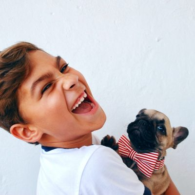 5 Tips to Help You Introduce a Puppy to Your Children