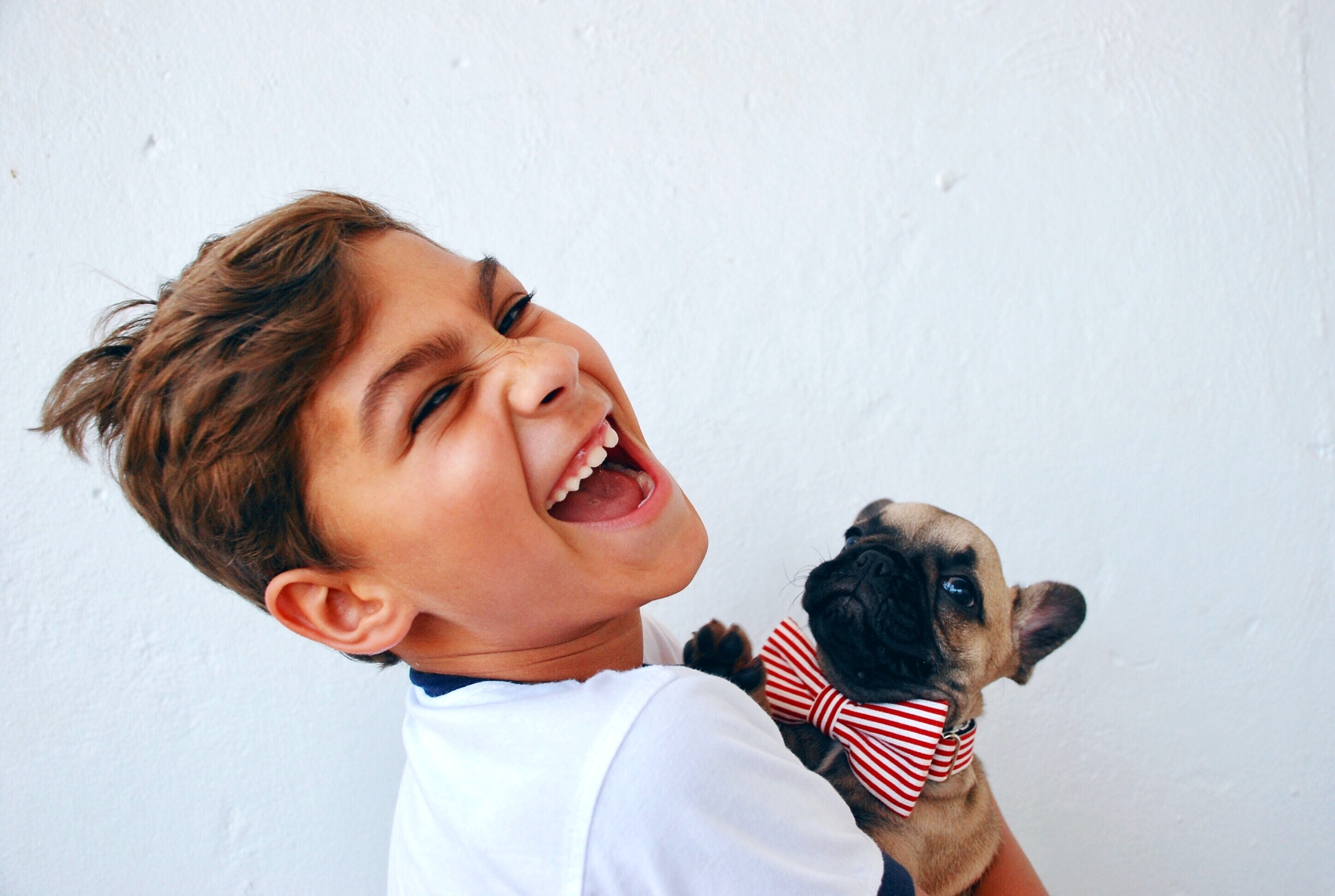 5 Tips to Help You Introduce a Puppy to Your Children from North Carolina Lifestyle Blogger Champagne Style Bare Budget