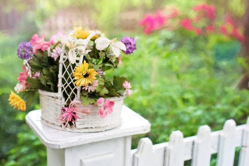 Tips to Create the Perfect Summer Garden from North Carolina Lifestyle Blogger Champagne Style Bare Budget