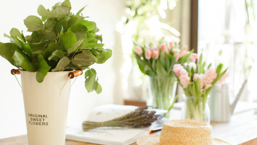 4 Plants You Should Have in Your Home to Keep Pests Away from North Carolina Lifestyle Blogger Champagne Style Bare Budget