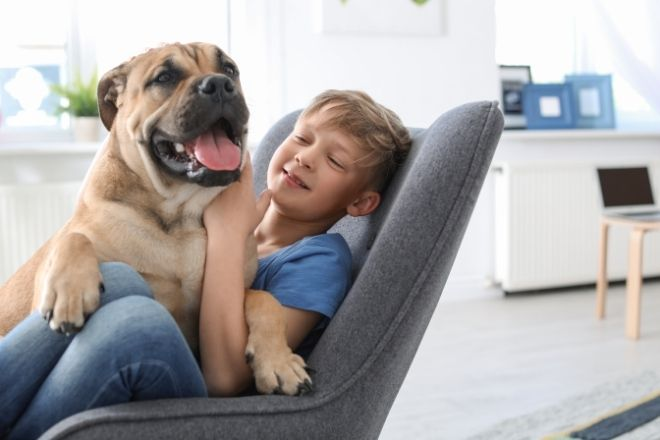 How Caring for Pets Teaches Your Children Responsibility