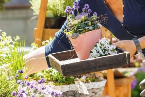 3 Ways To Spruce Up Your Garden This Spring